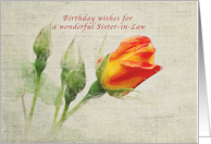 Happy Birthday Sister-in-law, Vintage, Roses card