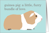 Guinea Pig Definition Blank Note Card
