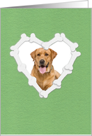 Custom Photo New Dog Announcement, Heart Shaped Frame of Bones card