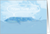 Happy Hump Day, Beautiful Humpback Whale card
