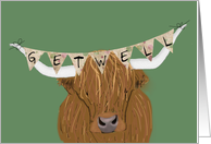 Scottish Highland Cow, Get Well from Car Accident card