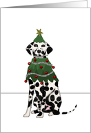 Dalmatian Christmas for Veterinarian card