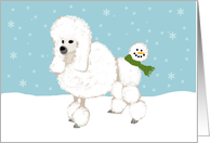 Fun Poodle Holiday Card for Veterinarian card