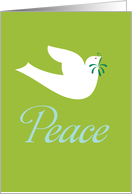 White Peace Dove With Olive Branch On Green Background card