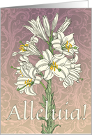 Alleluia Madonna Lily Easter card
