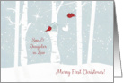 Merry First Christmas, Son and Daughter in Law, Love Birds, Newlyweds card
