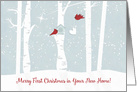 Merry First Christmas in Your New Home, Nature Outdoors Shooting Star card