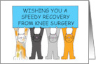 Wishing you a speedy recovery from knee surgery, with cartoon cats. card