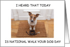 National Walk Your Dog Day, February 22nd card