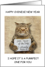 2018 Chinese New Year of the Dog Funny Cat card