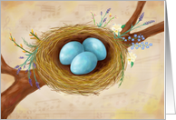Bird Nest with Spring Flowers, Blank inside card