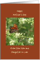 Happy Mothers's Day, From Son and Daughter in Law, Orange Butterfly card