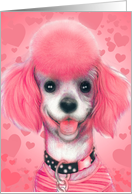 Pink Poodle Invitation to Party for Dogs card