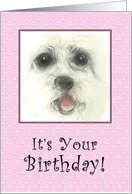 Bebe on Pink, Embroidered Birthday Card