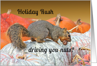 Holiday Rush Squirrel Encouragement Card