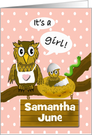 Baby Girl Announcement - Custom Name, Owls card
