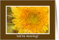 Moving, Sunflower Moving Announcement card