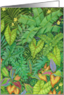 Jungle Foliage with Frogs Blank card