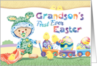 Grandson's 1st Easter - Woolly Baby Bunny with Chicks and Eggs card