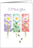 I miss You, Blank, - 3 Long Stem Daisies on Color Panels card
