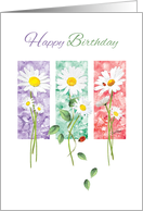 Happy Birthday, General - 3 Long Stem Daisies on Color Panels card