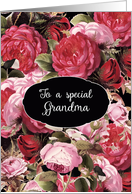 Happy Birthday to my special Grandma, Vintage Roses card