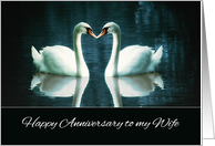 Happy Wedding Anniversary to my Wife, Swans card