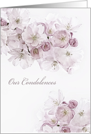 Our Condolences, Sympathy Card, White Blossoms card