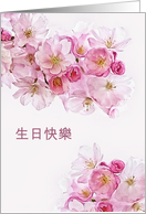 Happy Birthday in Chinese, Blossoms card