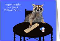 Happy Birthday to Cribbage Player, humor, raccoon playing cribbage card