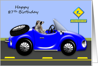 87th Birthday, age humor, adorable raccoon driving blue classic car card