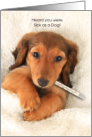 Get Well Soon Sick as a Dog a Dog with a Thermometer in bed card