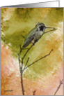 Hummingbird Watercolor Painting, Blank Note Card, Any Occasion card