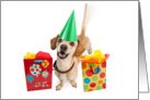 Cute Dog Wagging Tail Birthday Card