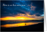 Sympathy - Dog at the Beach with Beautiful Sunset - Card