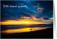 With Deepest Sympathy - Sincere Condolences - Beach Sunset - Dog card