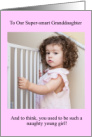 Congratulations, granddaughter, passed, passing, bar, girl, bars, naughty, photo, humor, funny, cell, childgate, gate card