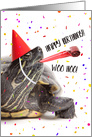 Happy Birthday For Anyone Turtle Humor card