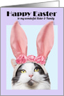 Happy Easter Sister & Family Funny Cat in Bunny Ears card