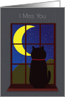 I Miss You Cat in WIndow at Night card