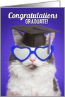 Congratulations Graduate For Anyone Cute Cat in Grad Cap Humor card