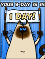 birthday countdown, countdown, 1 day untill birthday, bday, b-day, birthday, friend, kitty