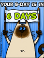 birthday countdown, countdown, 6 days untill birthday, bday, b-day, birthday, friend, kitty