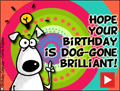 happy birthday, animated birthday card, dog-gone brilliant, b-day, birthday, dog
