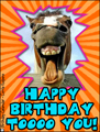 happy birthday, b-day,congratulations,hip hip hurray, horse,funny, animal, gallop
