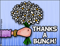 thank you, thanks, thx, thanks , thanks a bunch, flowers, bouquet,