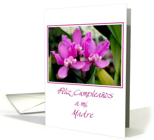 Happy birthday mother spanish 3 purple orchids card (535856)