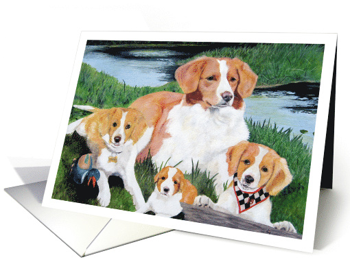 Nova Scotia Duck Tollers Retriever Dogs Pet Painting card (1564546)