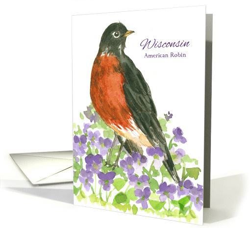 State Bird of Wisconsin American Robin Wood Violet Flower card
