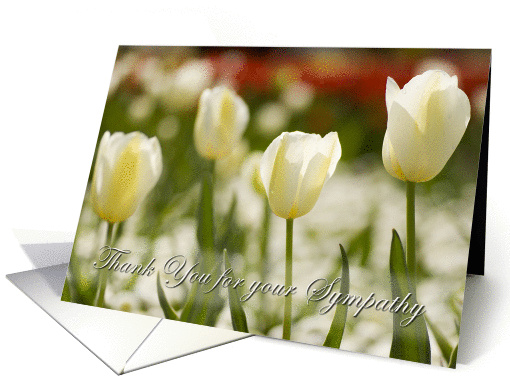 White Tulips - thank you for sympathy card (310327)